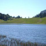 Seewaldsee-Blick-auf-Auerhu