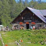 Moosangerlalm-Trattberg